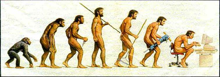 Evolution de l'homme - revenu complementaire à domicile